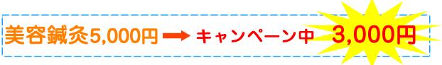 美容針灸5000円→キャンペーン中 3000円